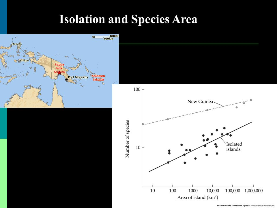 Isolation and Species Area
