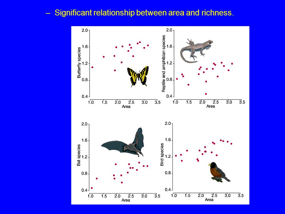 Significant relationship between area and richness.