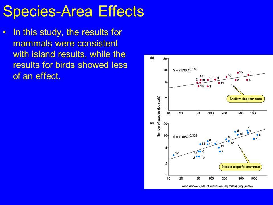 Species-Area Effects