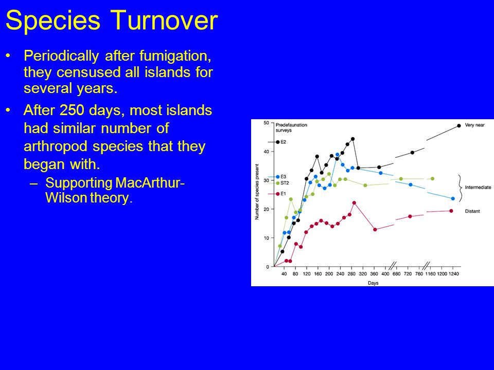 Species Turnover Periodically after fumigation, they censused all islands for several years.