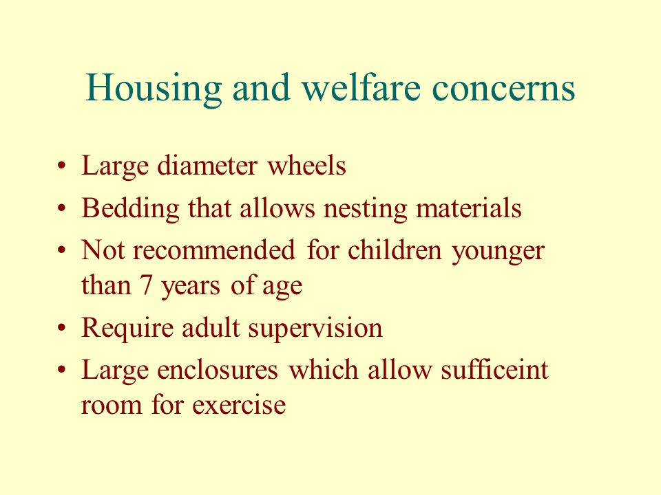 Housing and welfare concerns