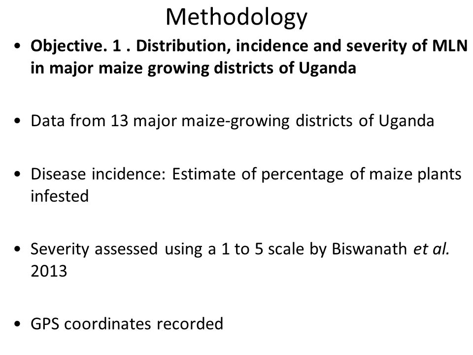 Methodology Objective. 1 . Distribution, incidence and severity of MLN in major maize growing districts of Uganda.