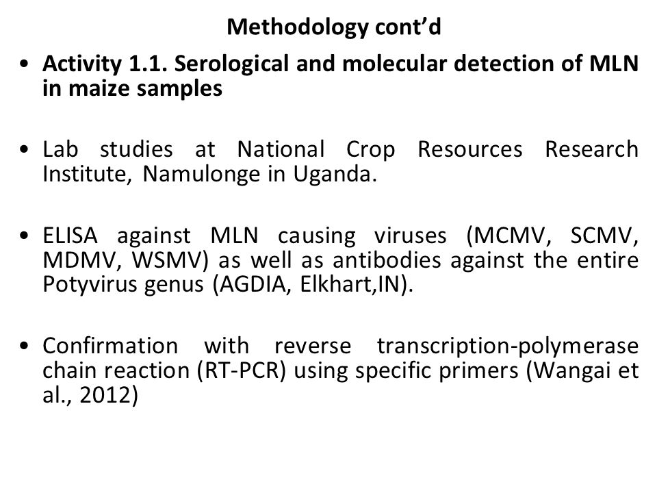 Methodology cont'd Activity 1.1. Serological and molecular detection of MLN in maize samples.