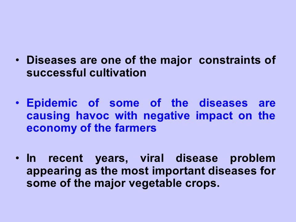 Diseases are one of the major constraints of successful cultivation
