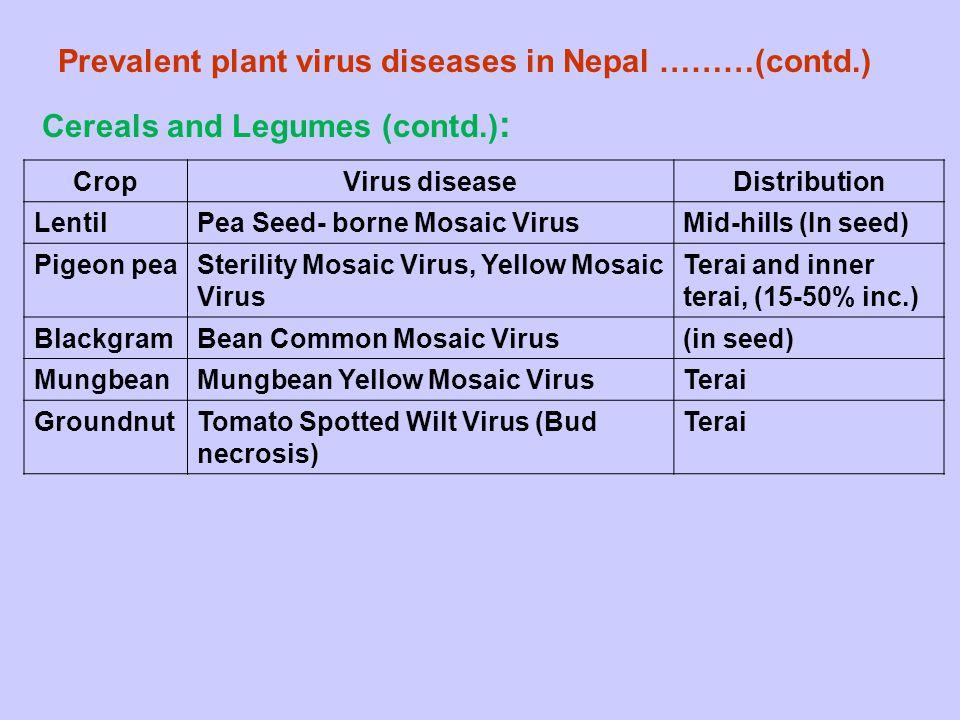 Prevalent plant virus diseases in Nepal ………(contd.)
