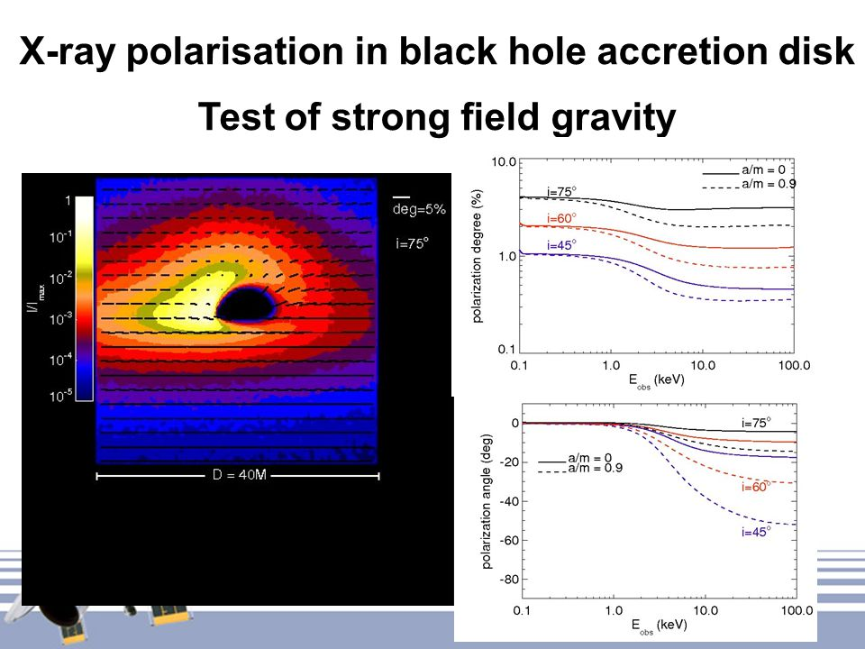 X-ray polarisation in black hole accretion disk