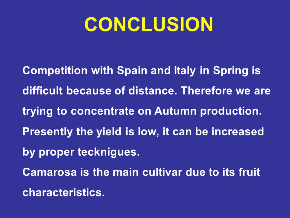 CONCLUSION Competition with Spain and Italy in Spring is difficult because of distance. Therefore we are trying to concentrate on Autumn production.