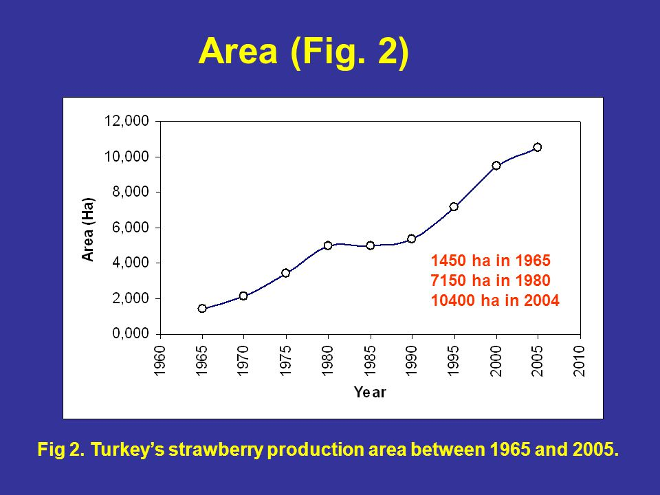 Fig 2. Turkey's strawberry production area between 1965 and 2005.