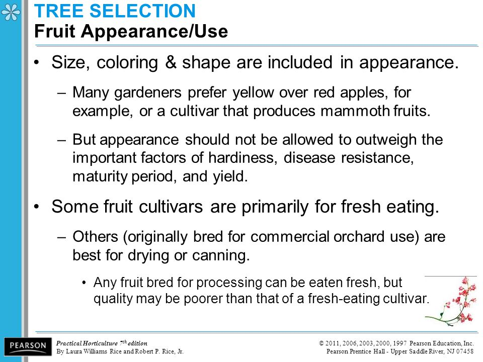 TREE SELECTION Fruit Appearance/Use