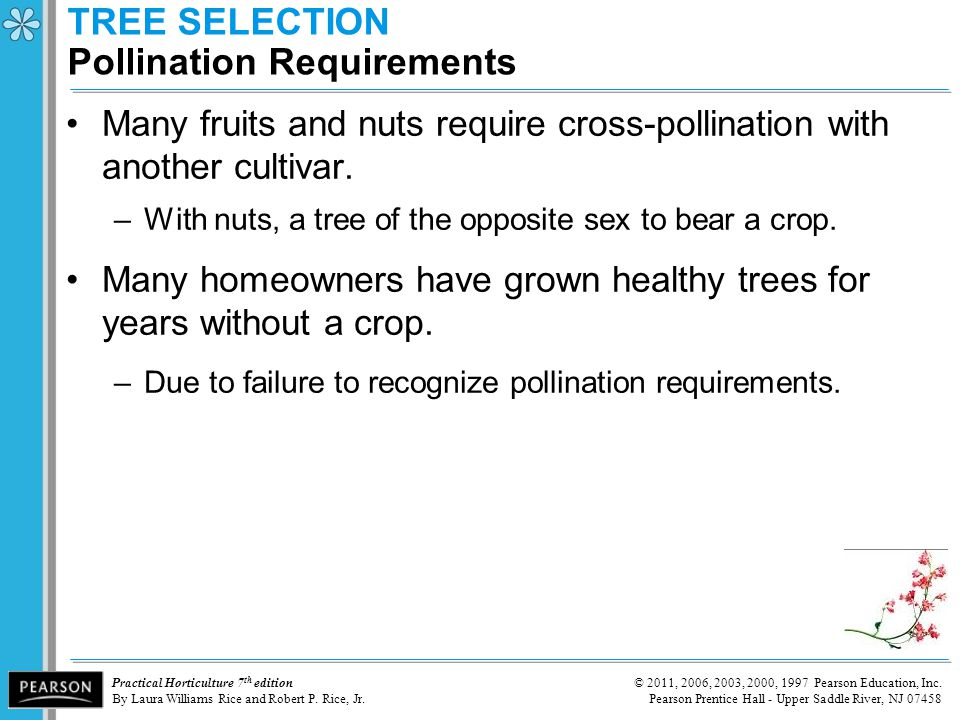 TREE SELECTION Pollination Requirements