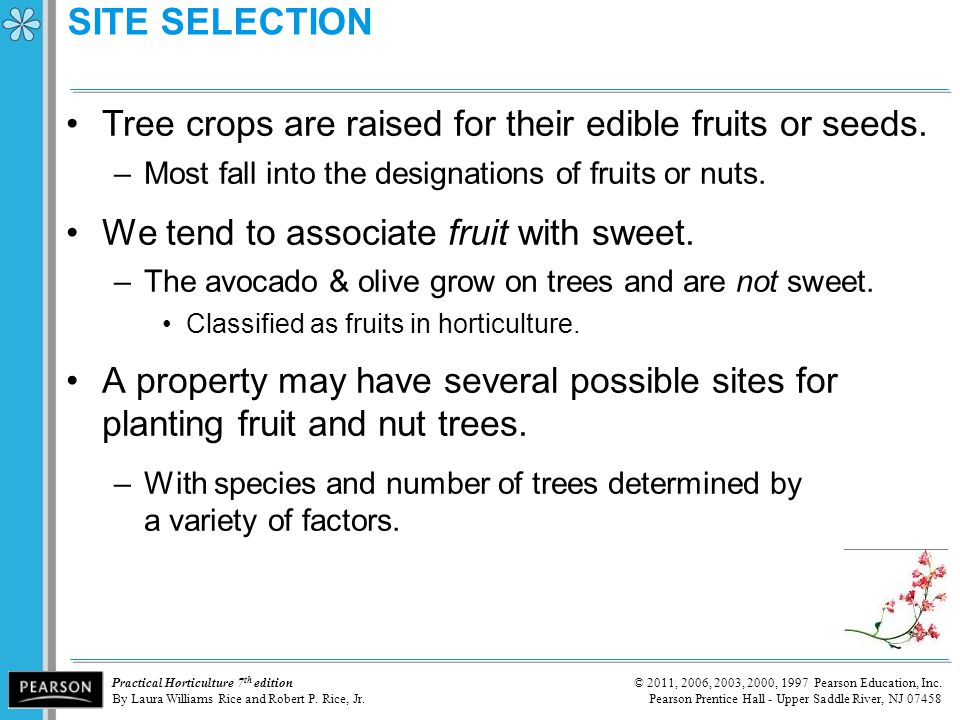 SITE SELECTION Tree crops are raised for their edible fruits or seeds.