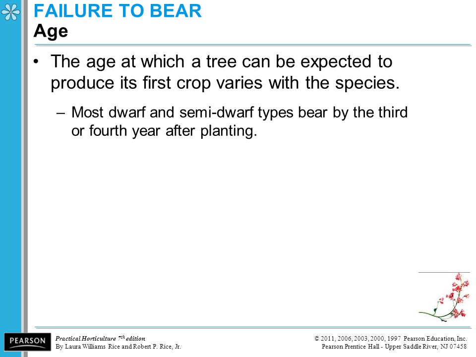 FAILURE TO BEAR Age The age at which a tree can be expected to produce its first crop varies with the species.