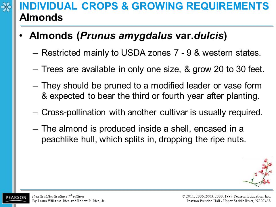 INDIVIDUAL CROPS & GROWING REQUIREMENTS Almonds