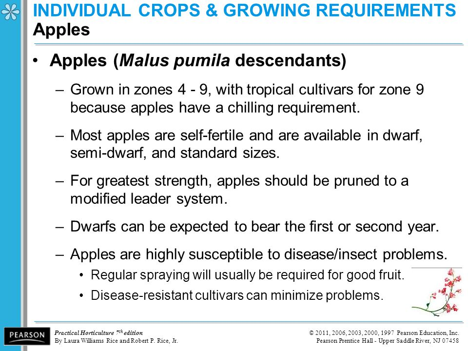 INDIVIDUAL CROPS & GROWING REQUIREMENTS Apples