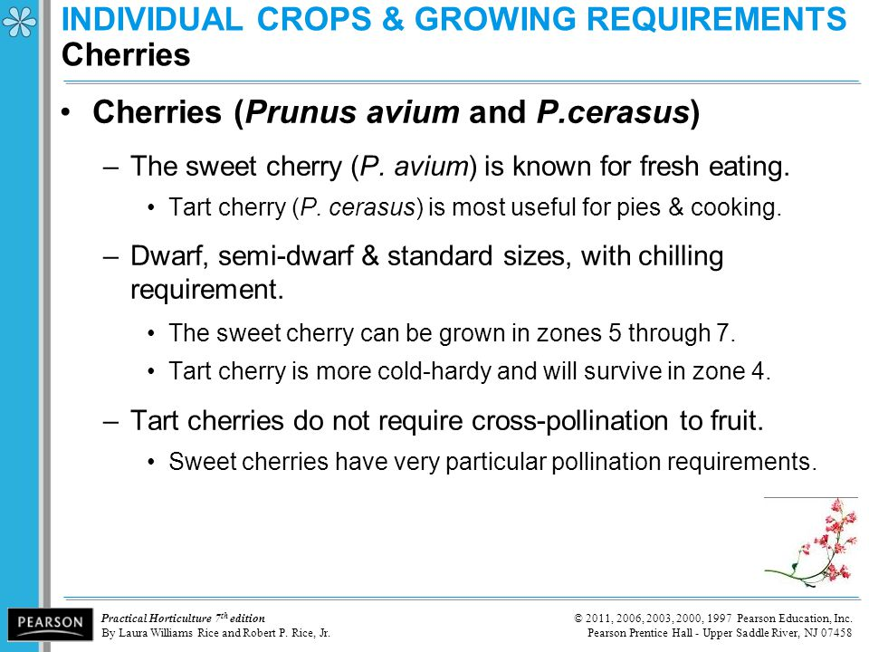 INDIVIDUAL CROPS & GROWING REQUIREMENTS Cherries