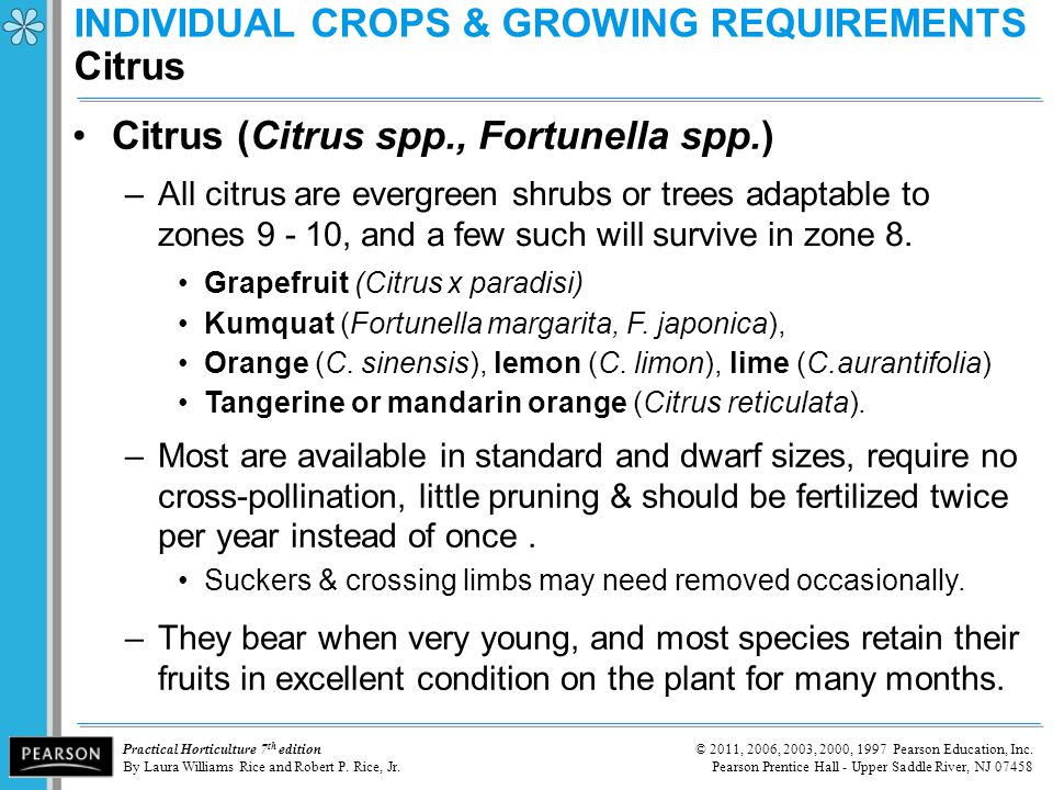 INDIVIDUAL CROPS & GROWING REQUIREMENTS Citrus
