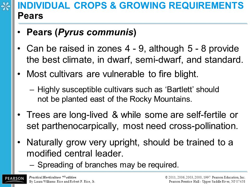 INDIVIDUAL CROPS & GROWING REQUIREMENTS Pears