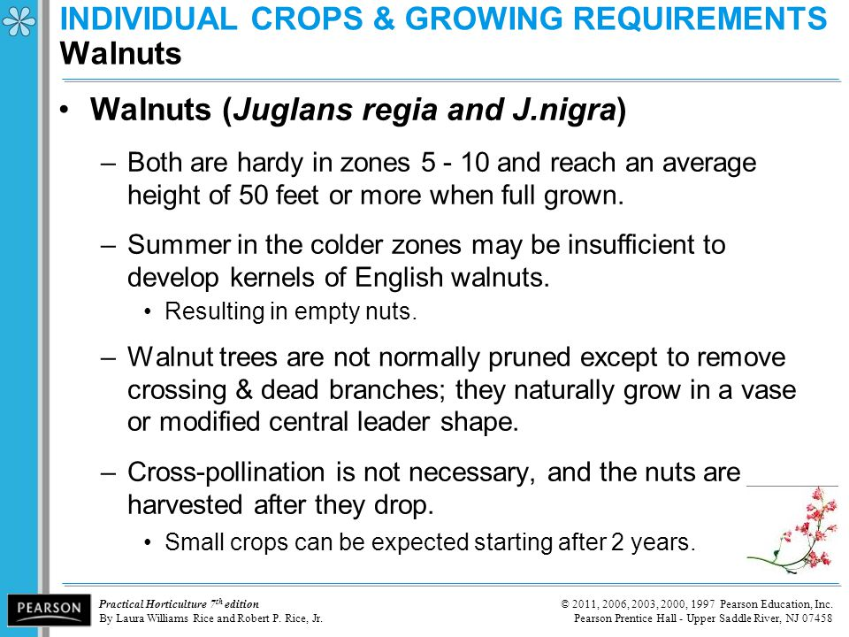 INDIVIDUAL CROPS & GROWING REQUIREMENTS Walnuts