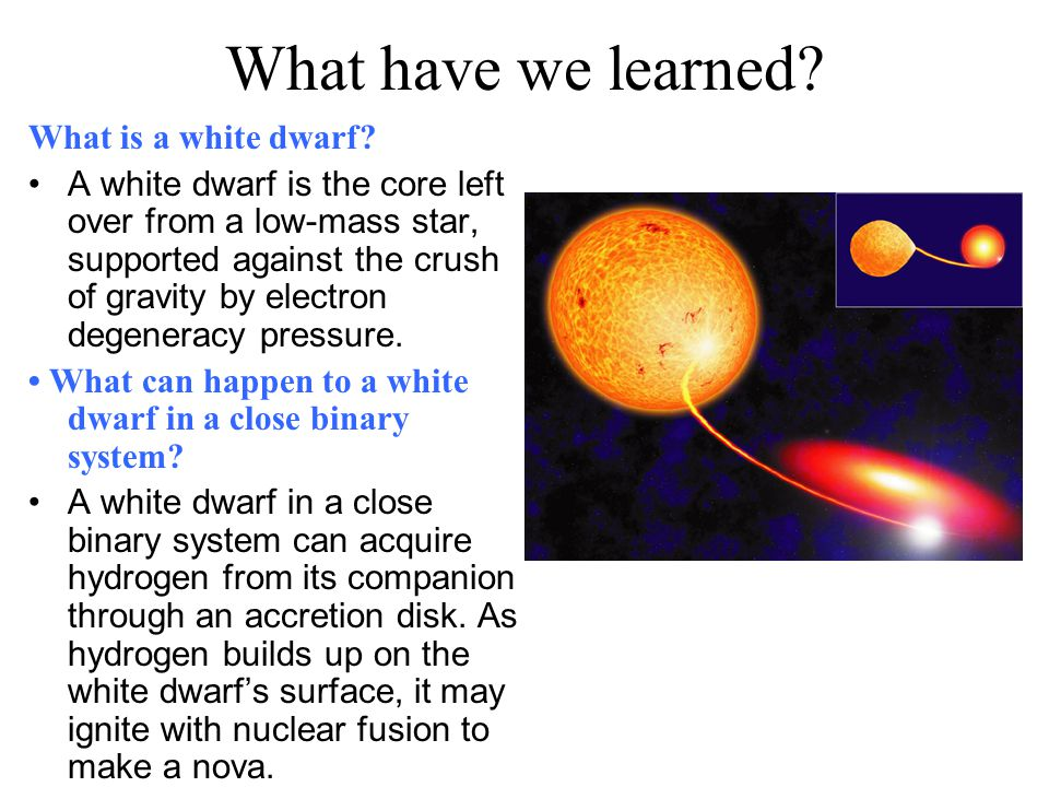 What have we learned What is a white dwarf