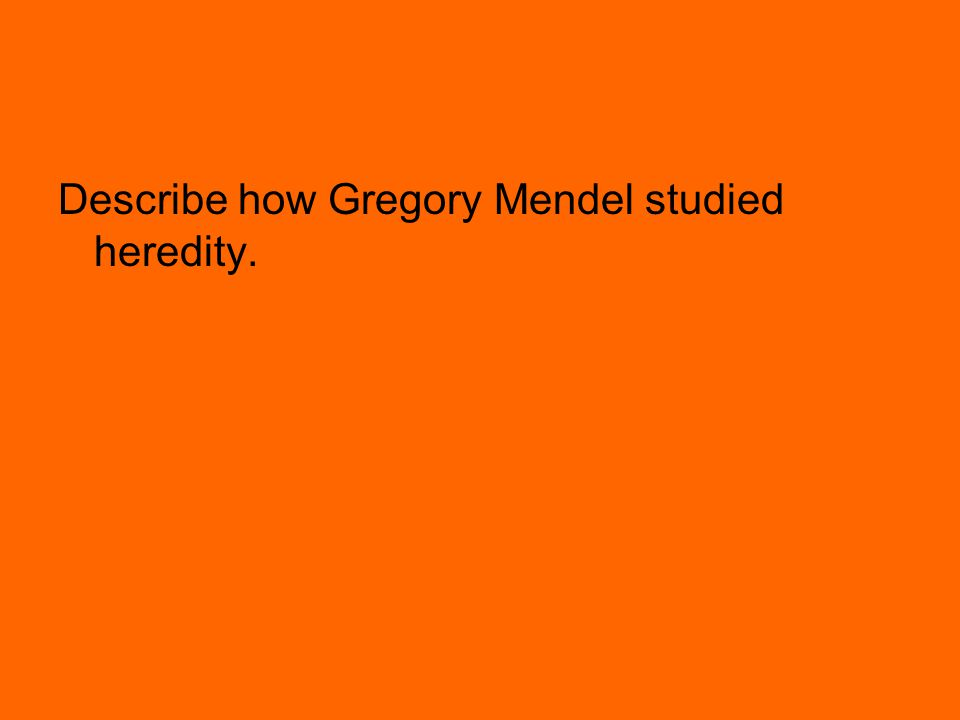 Describe how Gregory Mendel studied heredity.