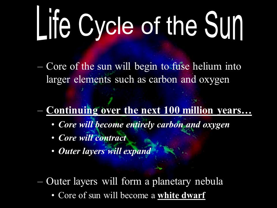 Life Cycle of the Sun Core of the sun will begin to fuse helium into larger elements such as carbon and oxygen.