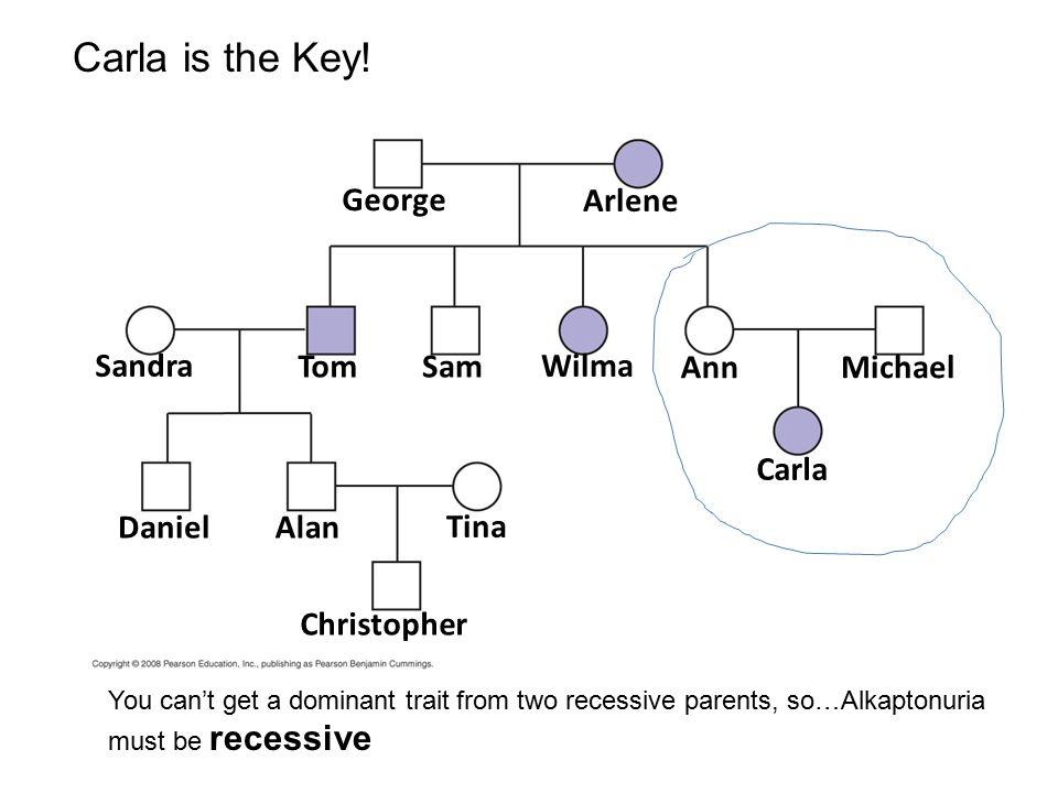 Carla is the Key! George Arlene Sandra Tom Sam Wilma Ann Michael Carla