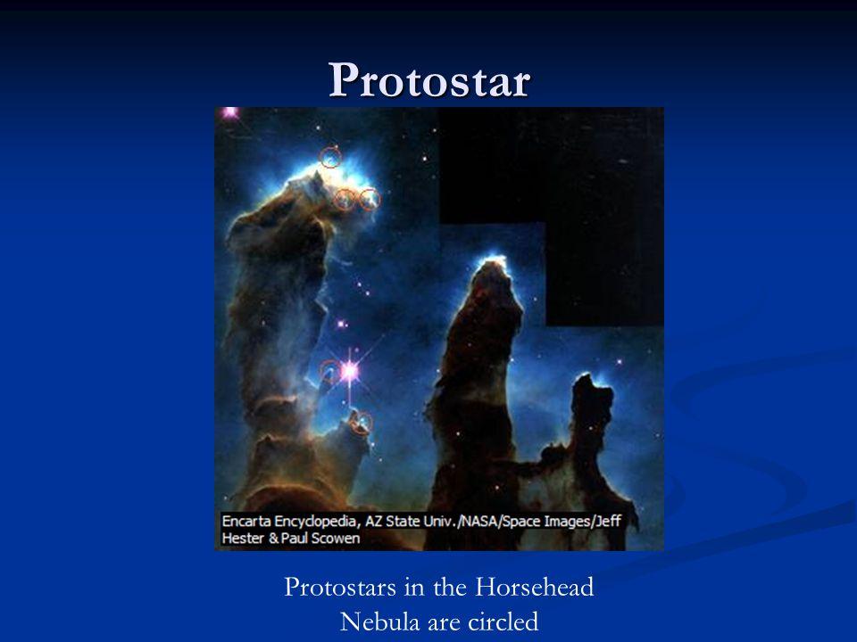 Protostars in the Horsehead Nebula are circled