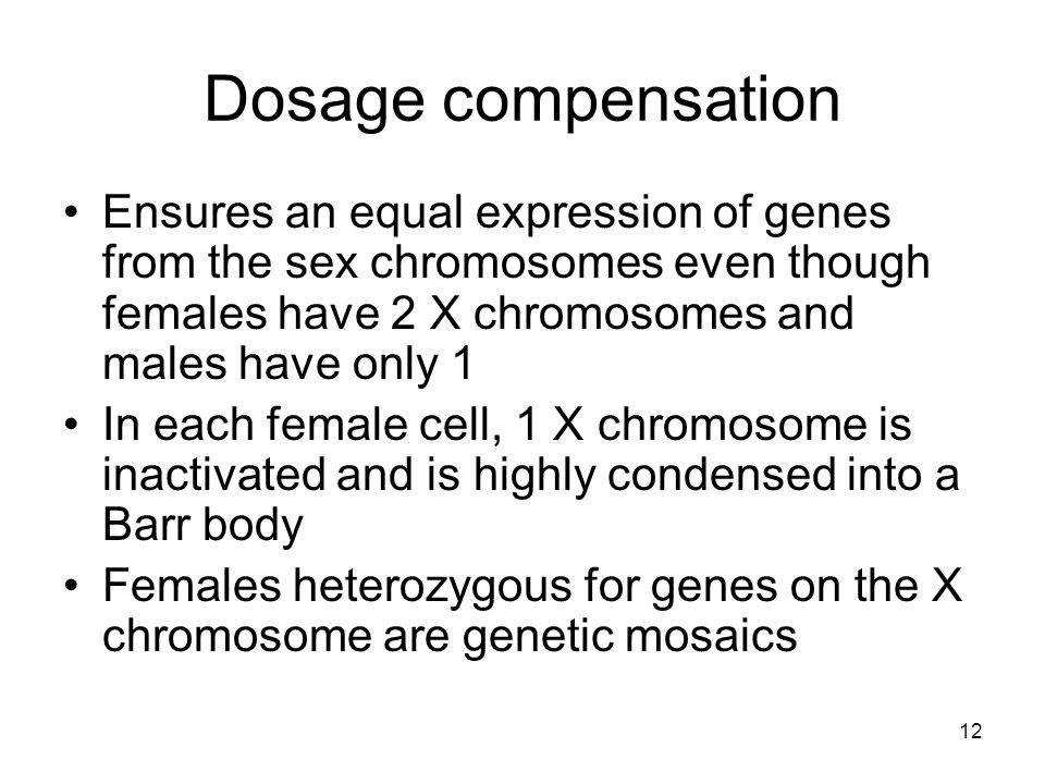 Dosage compensation Ensures an equal expression of genes from the sex chromosomes even though females have 2 X chromosomes and males have only 1.