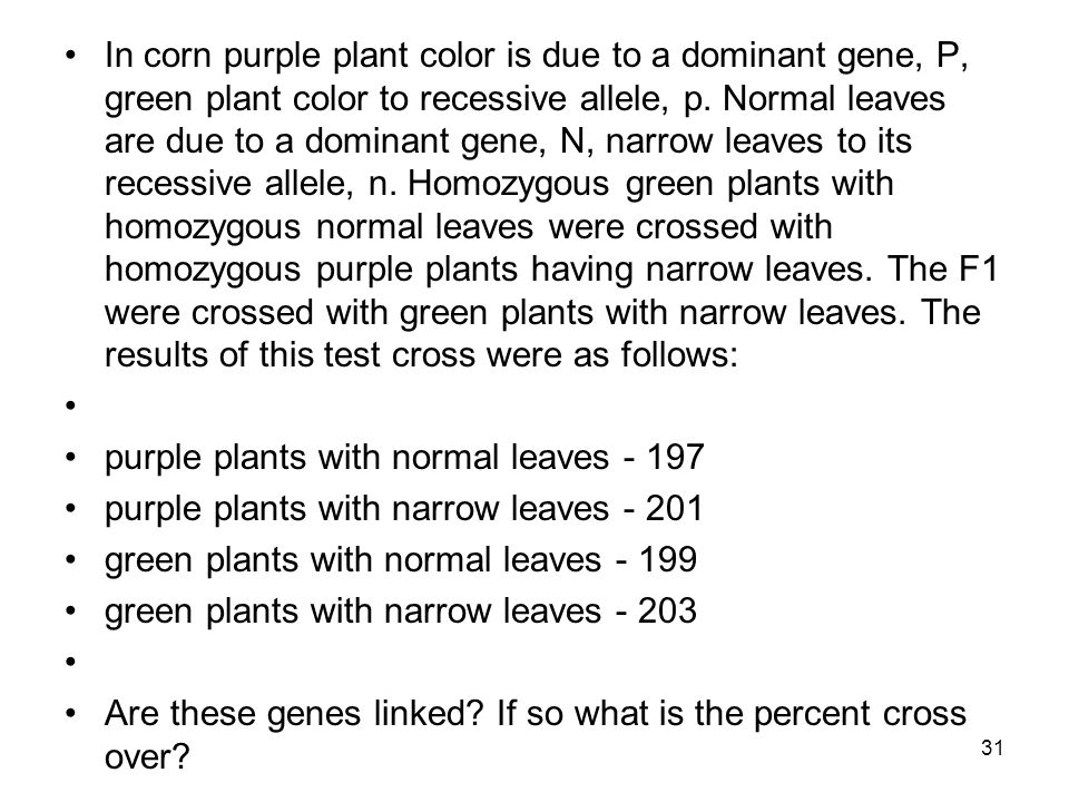 In corn purple plant color is due to a dominant gene, P, green plant color to recessive allele, p. Normal leaves are due to a dominant gene, N, narrow leaves to its recessive allele, n. Homozygous green plants with homozygous normal leaves were crossed with homozygous purple plants having narrow leaves. The F1 were crossed with green plants with narrow leaves. The results of this test cross were as follows: