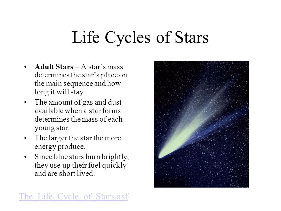 Life Cycles of Stars The_Life_Cycle_of_Stars.asf