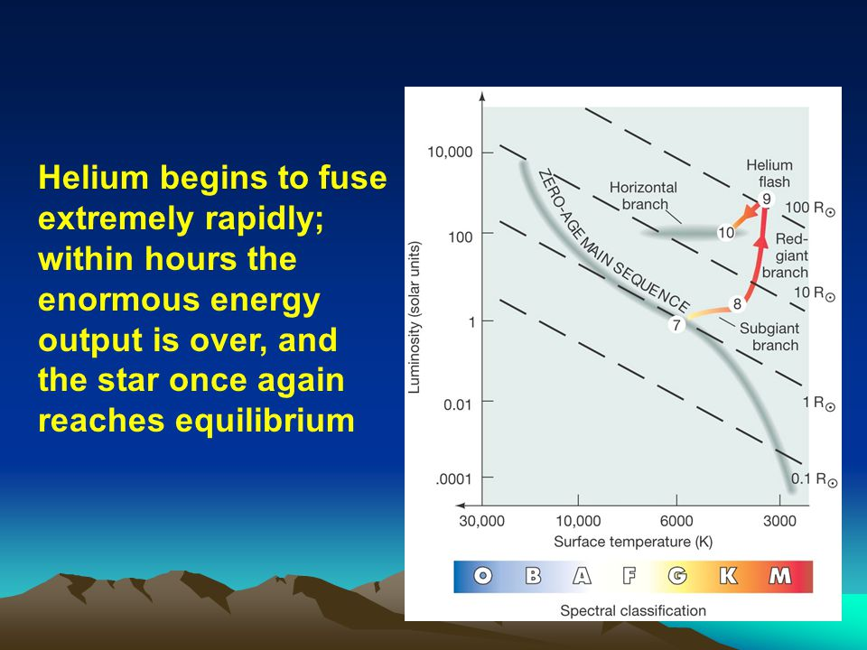 Helium begins to fuse extremely rapidly; within hours the enormous energy output is over, and the star once again reaches equilibrium