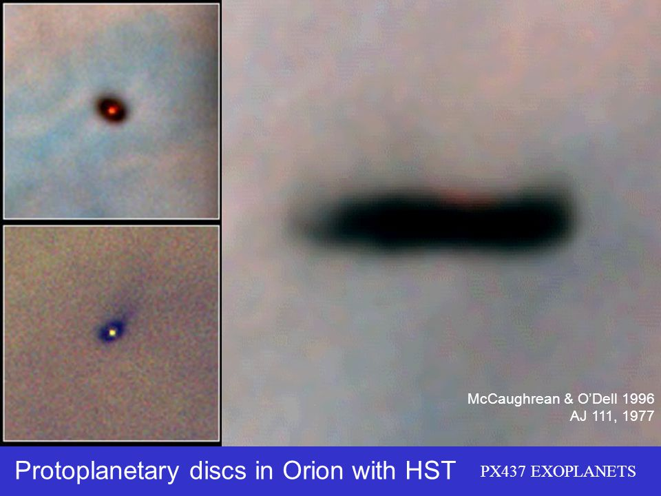 Protoplanetary discs in Orion with HST