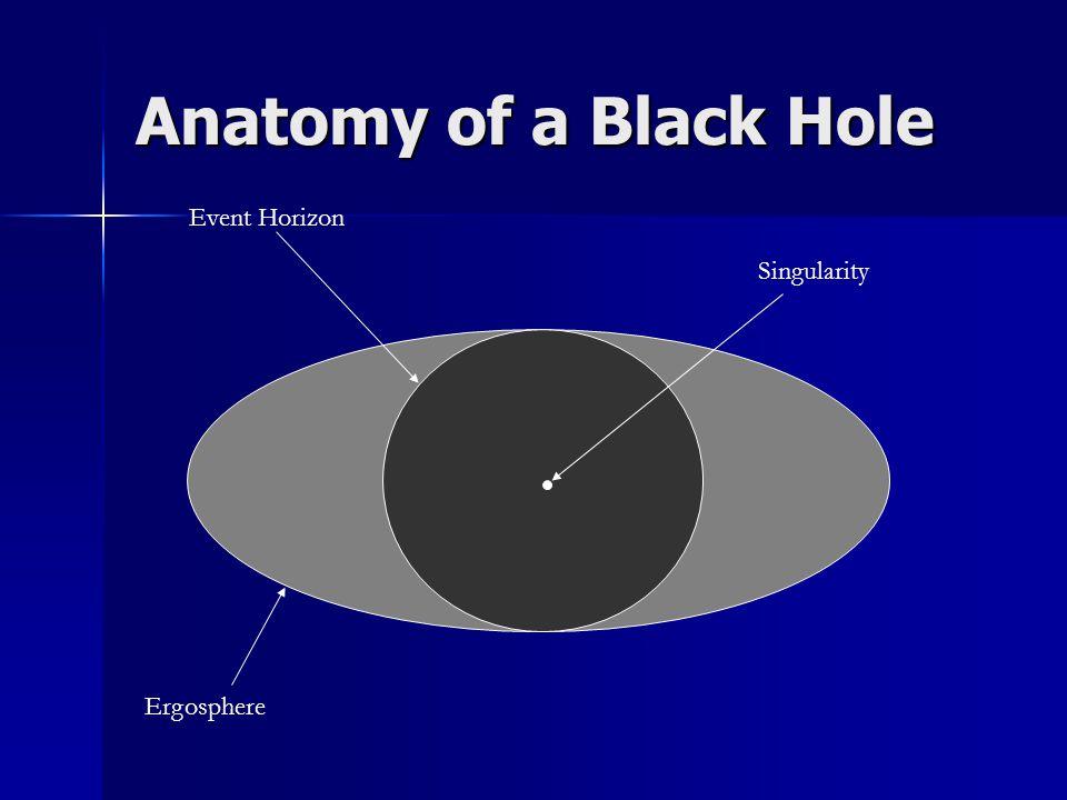 Anatomy of a Black Hole Event Horizon Singularity Ergosphere