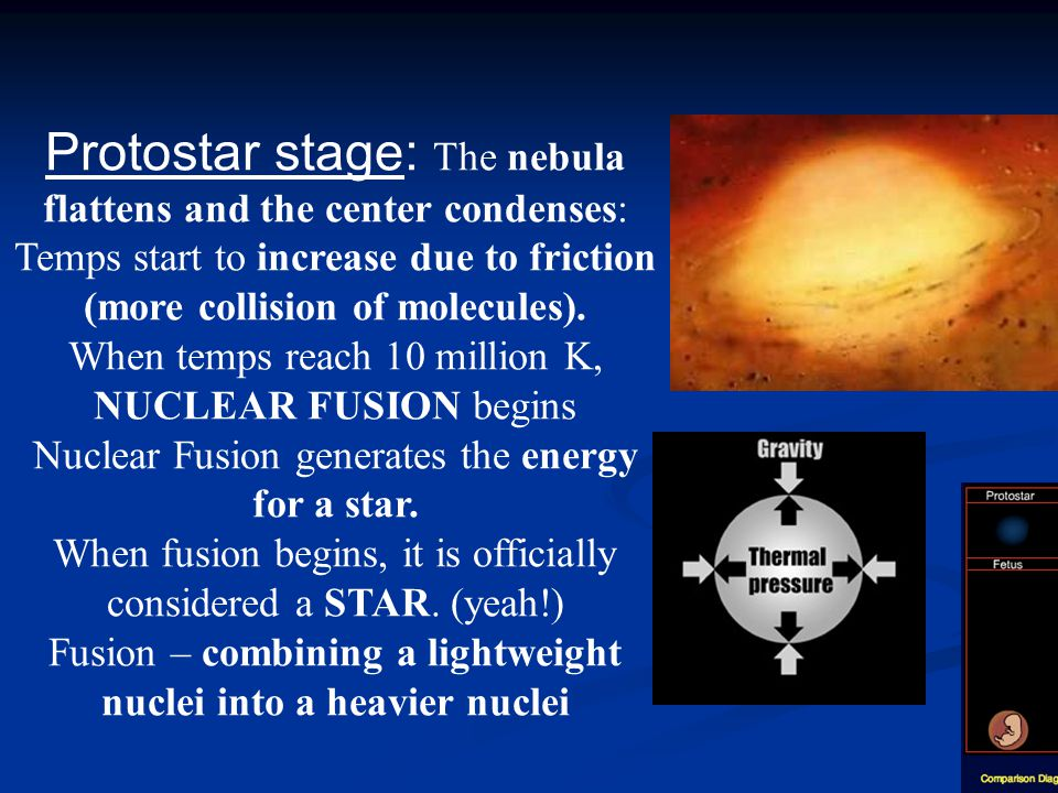 Protostar stage: The nebula flattens and the center condenses: