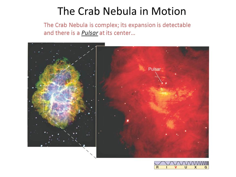 The Crab Nebula in Motion