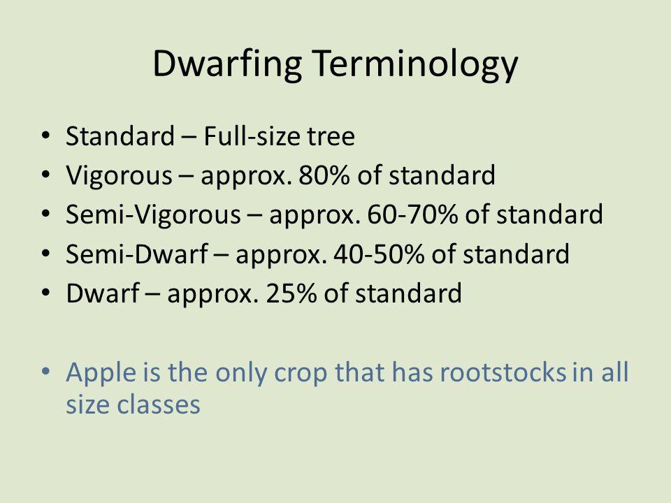 Dwarfing Terminology Standard – Full-size tree