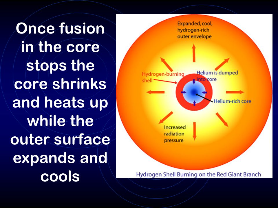 Once fusion in the core stops the core shrinks and heats up while the outer surface expands and cools