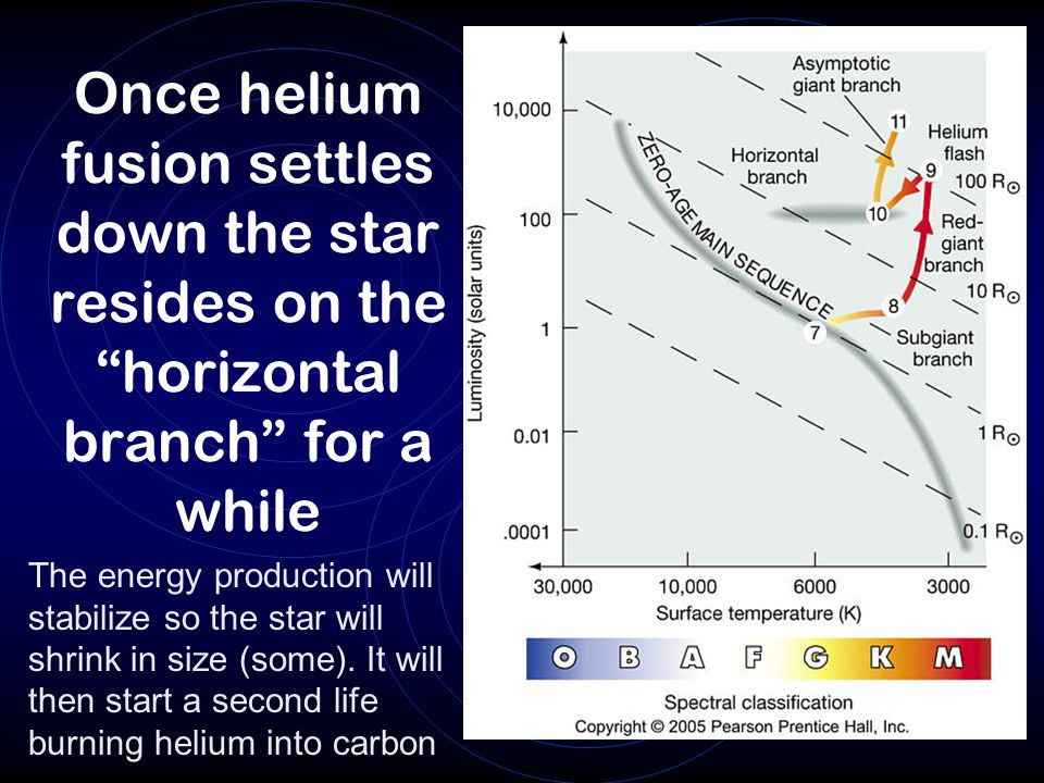 Once helium fusion settles down the star resides on the horizontal branch for a while