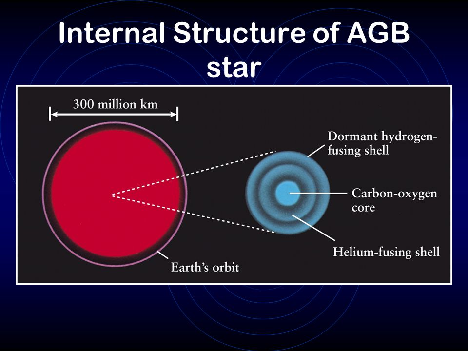 Internal Structure of AGB star