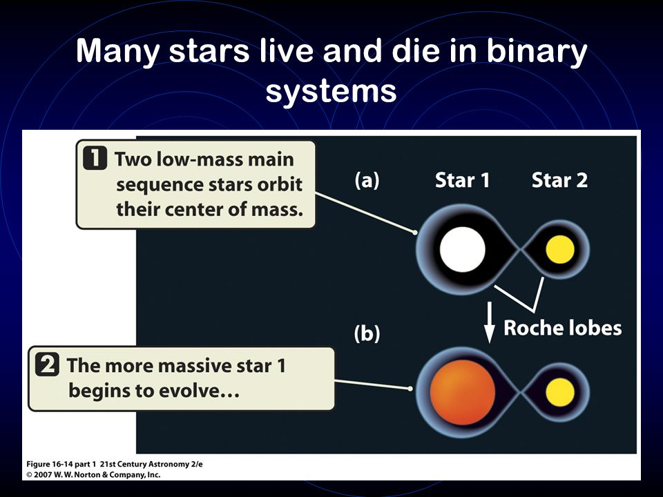 Many stars live and die in binary systems