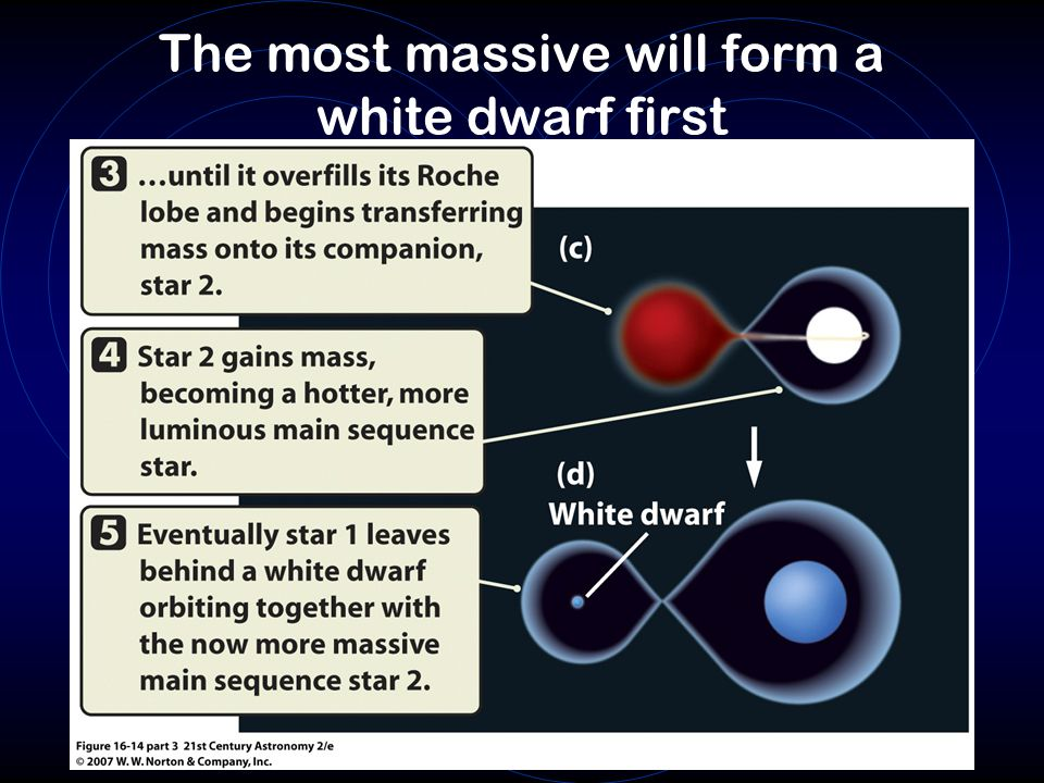 The most massive will form a white dwarf first