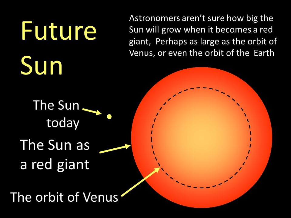 Future Sun The Sun as a red giant The Sun today The orbit of Venus