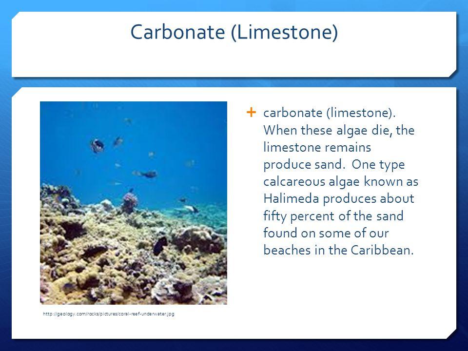 Carbonate (Limestone)