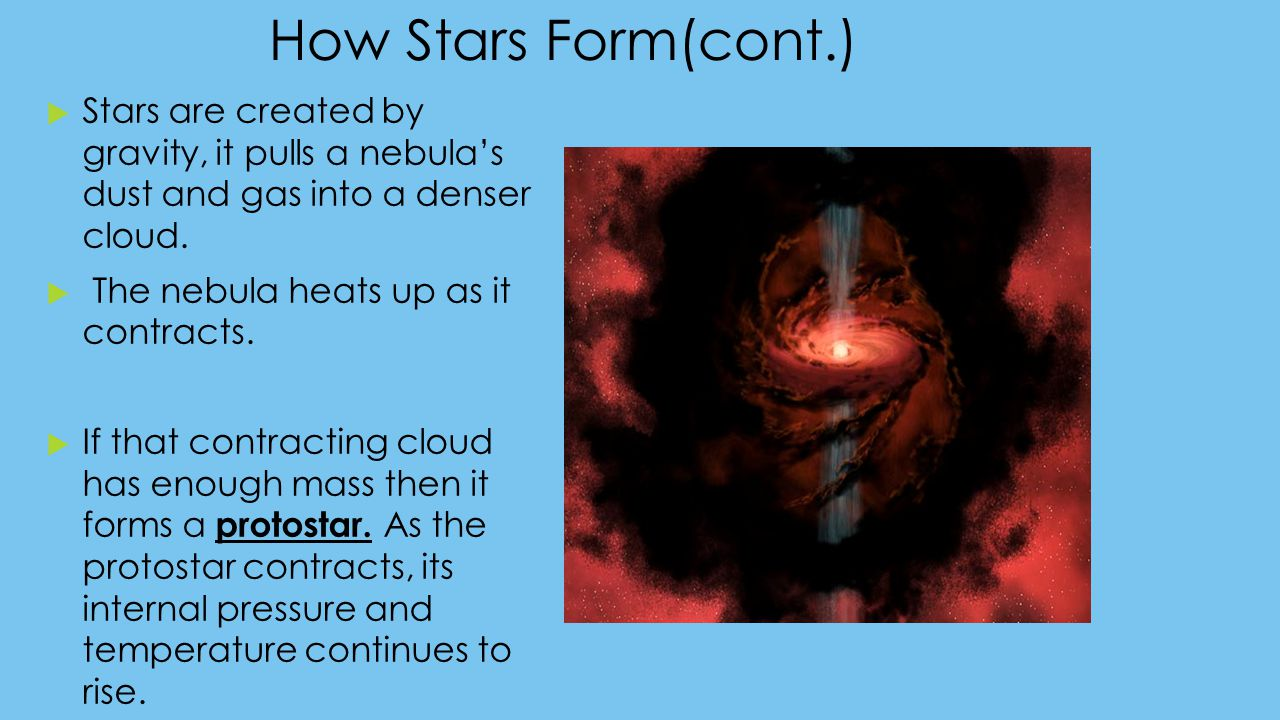 How Stars Form(cont.) Stars are created by gravity, it pulls a nebula's dust and gas into a denser cloud.