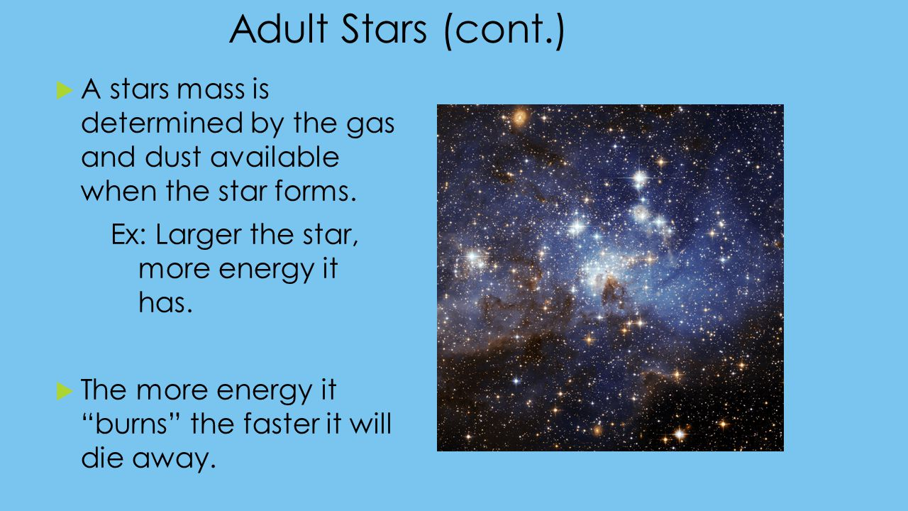 Adult Stars (cont.) A stars mass is determined by the gas and dust available when the star forms.