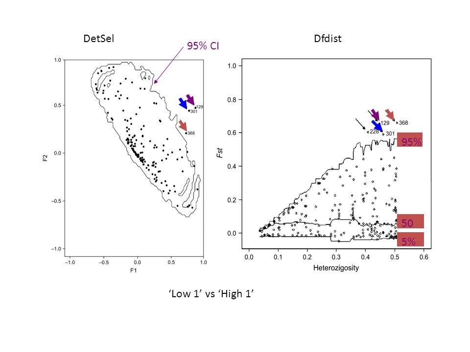DetSel Dfdist 95% CI 95% 50% 5% 'Low 1' vs 'High 1'