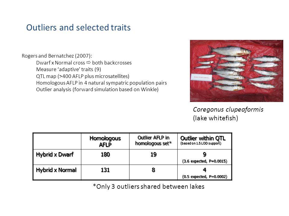 Outlier AFLP in homologous set*