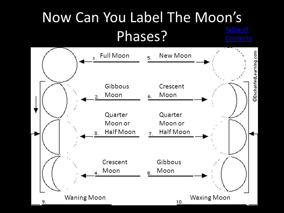 Now Can You Label The Moon's Phases