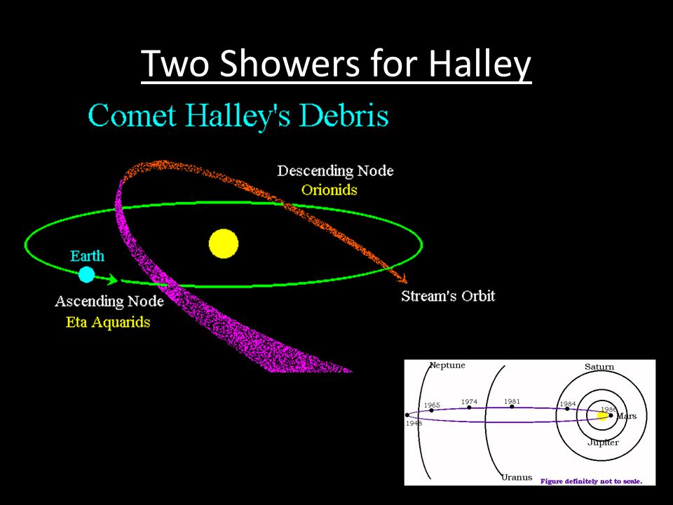 Two Showers for Halley