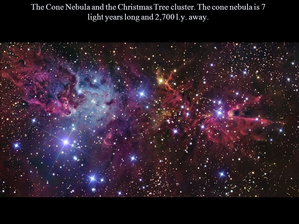 The Cone Nebula and the Christmas Tree cluster